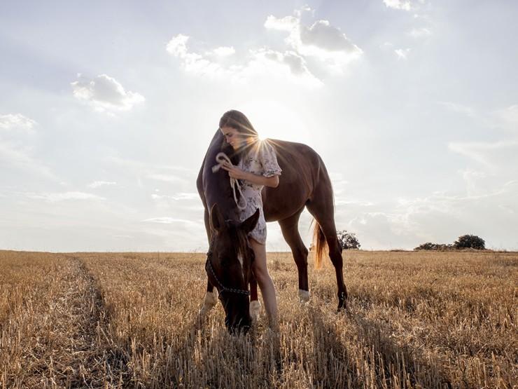 5bc73d400de694934134959c-aniversatu-con-my-horseback-view