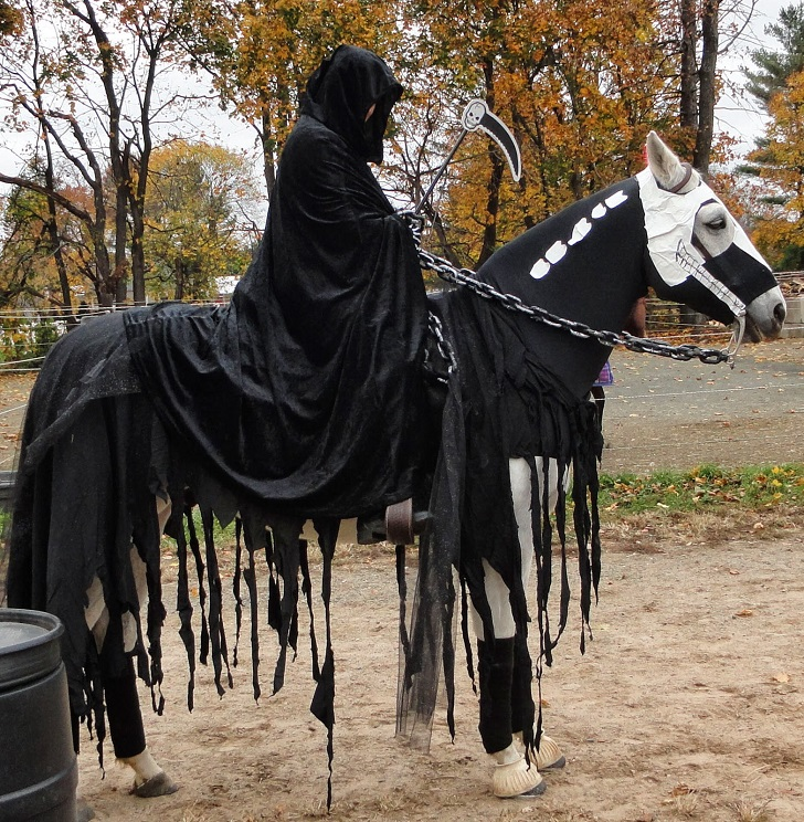 Halloween-costumes-for-horses-DIY-ideas-creative-Haloween-costume-ideas