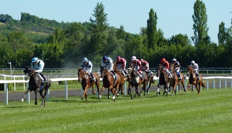 horse-race-1665688_1280