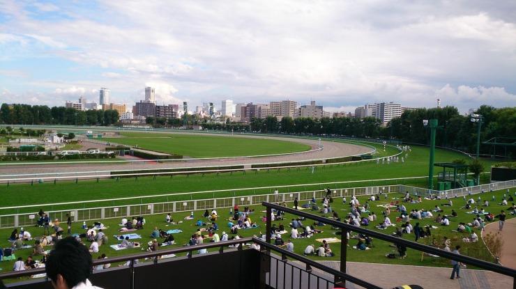 racecourse-444120_1280.jpg